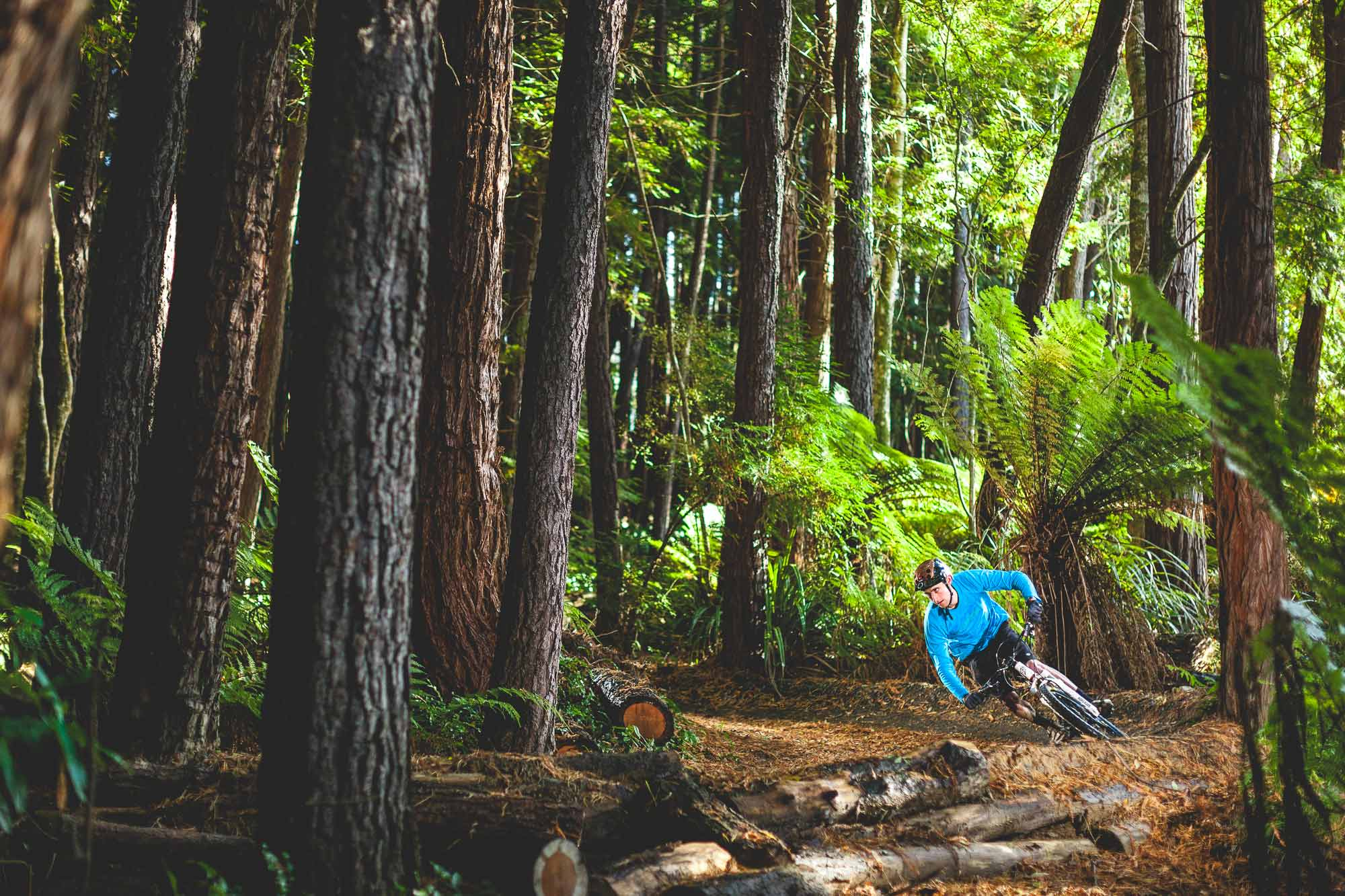 Mountain bike rider Ethan Glover riding in Dunedin red wood forest