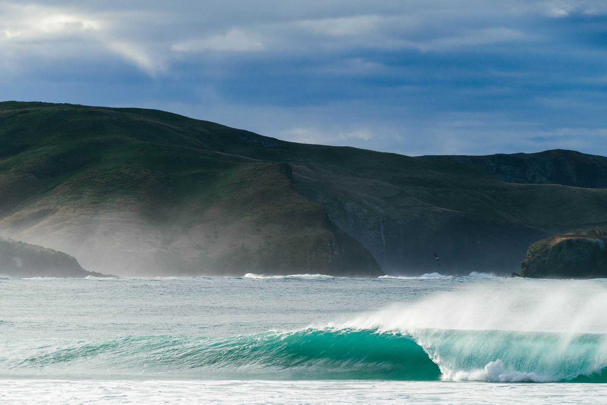 Waves in Dunedin