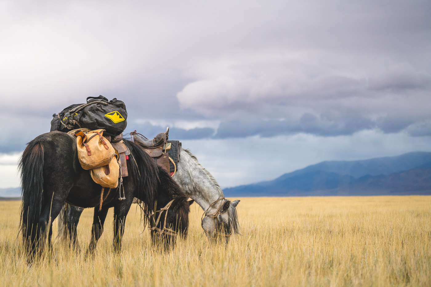 Stefan_Haworth-conquering-the-fear-horse-riding-in-mongolia-00225