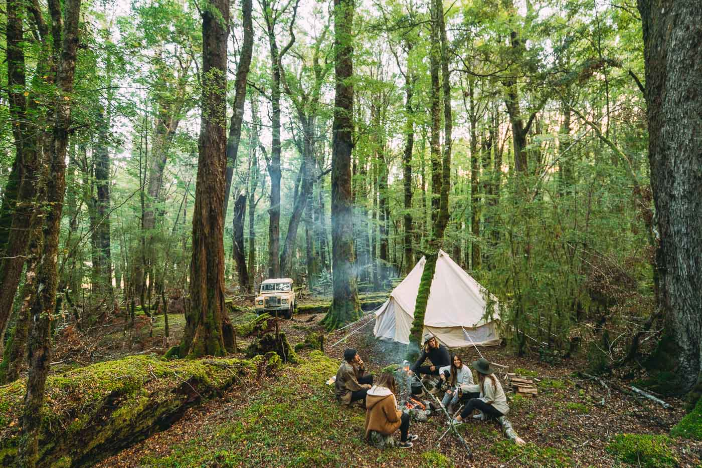 Camping in the Ancient forest of New Zealand
